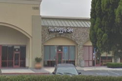 dog spa in huntington beach